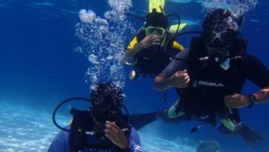 モルディブオプショナルツアー ダイビング